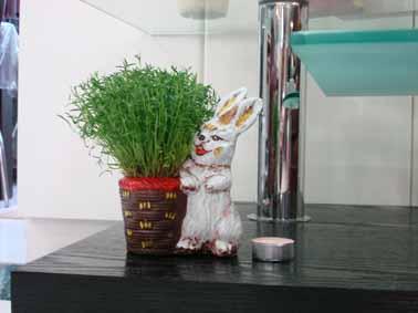 سبزه خرگوش 90